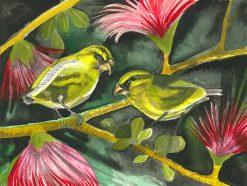 Kiwikiu (Maui Parrotbill)