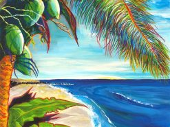 Baby Beach Paradise