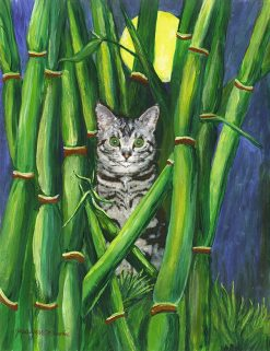 Beezer in the Bamboo