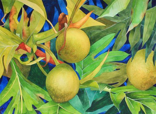 KNN Breadfruit