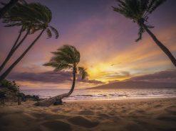 TK Kihei Dreaming Sunset