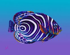 ND Emperor Juvenille Angelfish 17x21