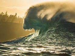 Lions Breath Wave photograph by scott hareland