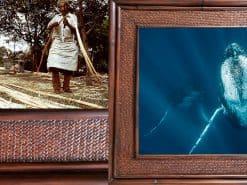 Scott Hareland The Protector Hawaii Rattan Frame