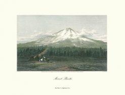 Appleton Mount Shasta