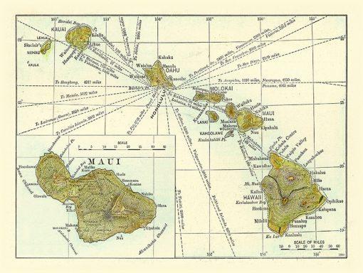 1899 Bormay & Company -Harpers Weekly- Maui Insert