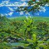 Fields Waikamoi Reserve