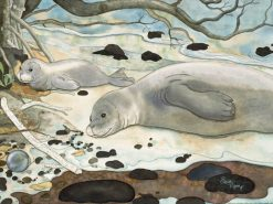 Mother-Baby Monk Seal