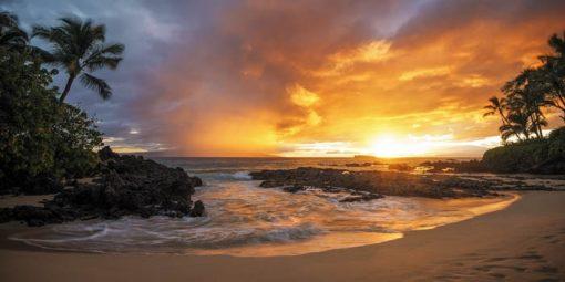 The Magic of Maui