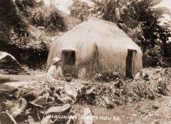 Hawaiian Grass House