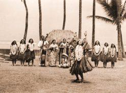 Hawaiian Style Elua