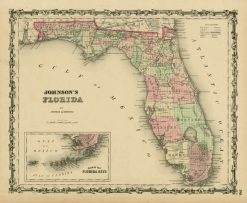 1851 Johnson Florida
