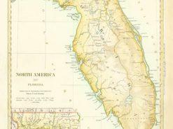 1834 SDUK Florida