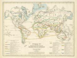 Petermann (Orr & Co) World (Mammals) 1853