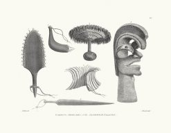 Various Articles of the Sandwich Islands